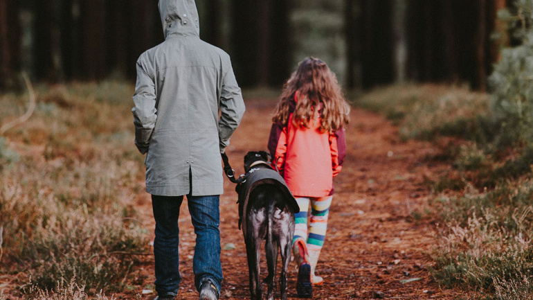 How Often Should You Walk Your Dog?